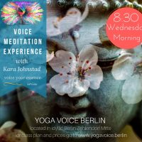 4 Part VOICE Meditation Experience